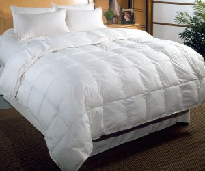 Silk Filled Comforters
