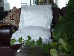 Silk Filled Comforters